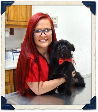 Animal Clinic Staff